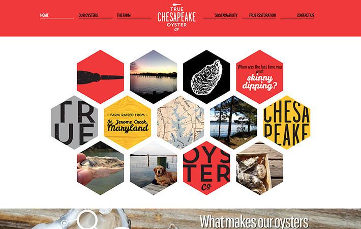 True Chesapeake Oyster Website Homepage Screenshot
